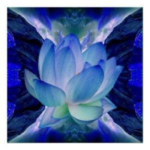 blue_lotus_flower_posters-r51f69c008ef24e76a81c8cadaf836f44_w2q_8byvr_324